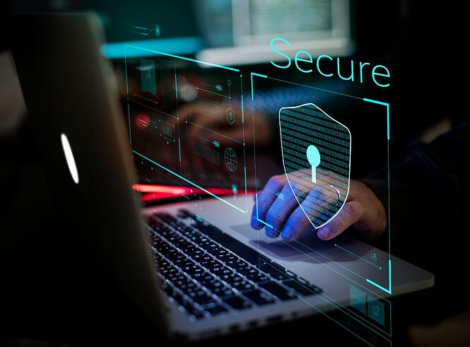 Managed web services protection & security